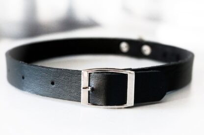 Steampunk bdsm submissive slave leather collar